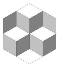 Trick Cube