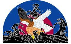 波鷲(なみわし)